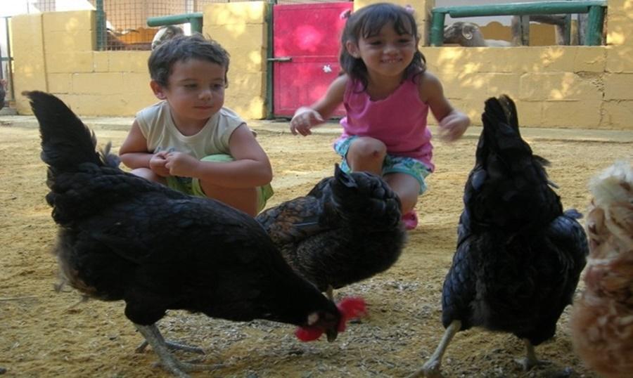 granja-escola-masia-pla-dels-catalans